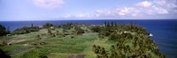 "Keanae Peninsula, Hana, Maui, Hawaii, USA by Panoramic Images - 36"" x 12"""