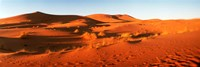 Desert at sunrise, Sahara Desert, Morocco Framed Print