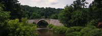 "Arch bridge across Casselman River, Casselman Bridge, Casselman River Bridge State Park, Garrett County, Maryland, USA by Panoramic Images - 36"" x 12"""