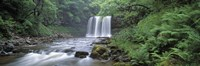 "Waterfall in a forest, Sgwd Yr Eira (Waterfall of Snow), Afon Hepste, Brecon Beacons National Park, Wales by Panoramic Images - 36"" x 12"""