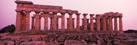 Ruins of a temple, Temple E, Selinunte, Trapani Province, Sicily, Italy Fine Art Print