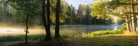 """Dal River, Sweden by Panoramic Images - 36"""" x 12"""", FulcrumGallery.com brand"""