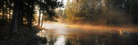 """Fog over a river, Dal River, Sweden by Panoramic Images - 36"""" x 12"""", FulcrumGallery.com brand"""