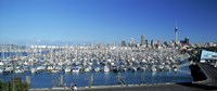 """Yachts at Waitemata Harbor, Sky Tower, Auckland, North Island, New Zealand by Panoramic Images - 36"""" x 12"""""""
