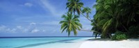 Palm trees on the beach, Fihalhohi Island, Maldives Fine Art Print