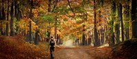 """Kid with backpack walking in fall colors by Panoramic Images - 36"""" x 12"""""""