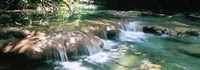 """River flowing in summer afternoon light, Siagnole River, Provence-Alpes-Cote d'Azur, France by Panoramic Images - 36"""" x 12"""""""