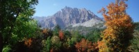 "Pelens Needle in autumn, French Riviera, Provence-Alpes-Cote d'Azur, France by Panoramic Images - 36"" x 12"""