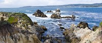 """Rock formations on the coast, Point Lobos State Reserve, Carmel, Monterey County, California by Panoramic Images - 36"""" x 12"""""""