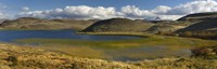 """Pond with sedges, Torres del Paine National Park, Chile by Panoramic Images - 36"""" x 12"""""""