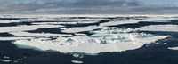 "Ice floes on the Arctic Ocean, Spitsbergen, Svalbard Islands, Norway by Panoramic Images - 36"" x 12"""