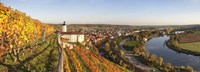 """Vineyards around a castle, Horneck Castle, Gundelsheim, Baden-Wurttemberg, Germany by Panoramic Images - 36"""" x 12"""""""