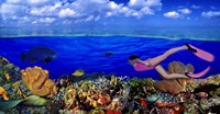 "Diver along reef with parrotfish, Green Moray Eel and White Spotted Filefish (Cantherhines macrocerus) underwater by Panoramic Images - 36"" x 19"" - $48.49"
