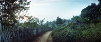 """Dirt road passing through an indigenous village, Chiang Mai, Thailand by Panoramic Images - 36"""" x 12"""", FulcrumGallery.com brand"""