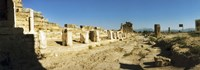 """Ruins of Hierapolis at Pamukkale with mountains in the background, Anatolia, Central Anatolia Region, Turkey by Panoramic Images - 36"""" x 12"""""""