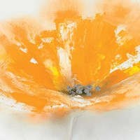 Wild Orange Sherbet I Fine Art Print