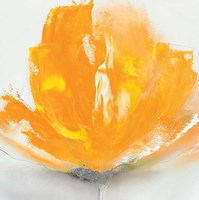 Wild Orange Sherbet II Fine Art Print