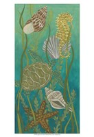 Aquatic Life II Fine Art Print
