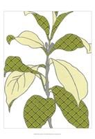 "Modern Foliage I by June Erica Vess - 13"" x 19"" - $12.99"