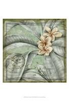 "Postmark Tropicals I by Jennifer Goldberger - 13"" x 19"", FulcrumGallery.com brand"