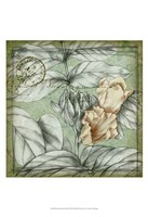 "Postmark Tropicals III by Jennifer Goldberger - 13"" x 19"", FulcrumGallery.com brand"