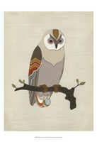 """13"""" x 19"""" Owl Pictures"""