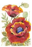 """Poppy Floral I by Timothy O'Toole - 13"""" x 19"""""""