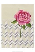 Rosa Ruby I Fine Art Print