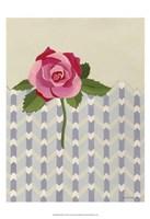 Rosa Ruby II Fine Art Print