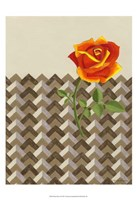"Rosa Dawn II by Vanna Lam - 13"" x 19"""