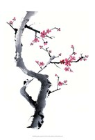 "Plum Blossom Branch I by Nan Rae - 13"" x 19"""