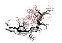 "Plum Blossom Branch III by Nan Rae - 19"" x 13"""