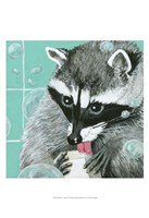 "13"" x 19"" Raccoon"