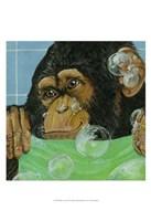 """Bubbles - James by Dlynn Roll - 13"""" x 19"""""""