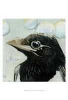 """Bubbles - Birdbath by Dlynn Roll - 13"""" x 19"""""""