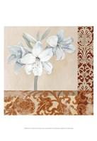 Portrait of a White Lily Fine Art Print