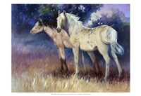 "Still Free by Carolyne Hawley - 19"" x 13"" - $12.99"