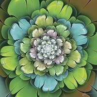 Fractal Blooms I Fine Art Print