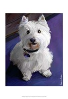 West Highland Terrier Fine Art Print