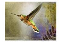 Hummer Flight Fine Art Print