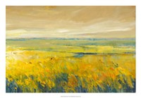 """26"""" x 18"""" Summer Pictures"""