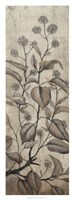 """Branch & Blossoms II by Timothy O'Toole - 14"""" x 38"""" - $34.49"""