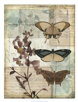 "Music Box Butterflies II by Jennifer Goldberger - 20"" x 26"", FulcrumGallery.com brand"