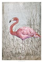 "American Flamingo II by Timothy O'Toole - 22"" x 32"""