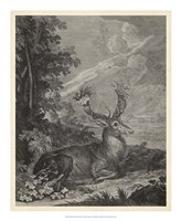 "Woodland Deer III by J. e. Ridinger - 18"" x 22"""