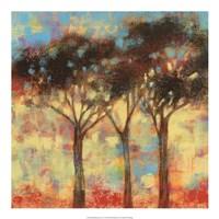 Kaleidoscope Trees I Framed Print