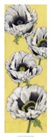 """Poppy Vine I by Jennifer Goldberger - 12"""" x 32"""" - $24.99"""