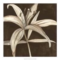 """18"""" x 18"""" Lilies Prints"""