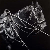 Rigging #1 by Julie Chapman - various sizes - $25.49