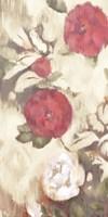 Ikat Rose III Fine Art Print